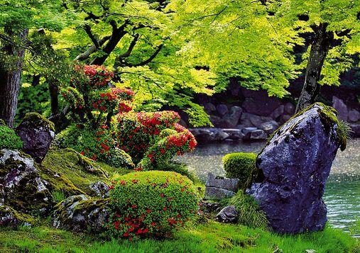 Il giardino giapponese for Giardino giapponesi